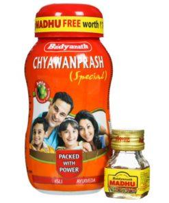 BAIDYANATH Chyawanprash Special with 20gm BAIDYANATH Madhu Free