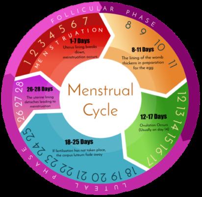 Periods Basic FAQ's