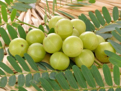 Top Health Benefits Of Amla (Indian Gooseberry)