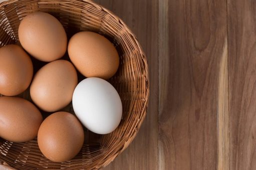 White Eggs Vs Brown Eggs: What One is Better?
