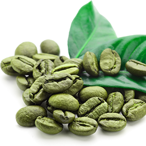 What is green coffee and is it safe? Find here!