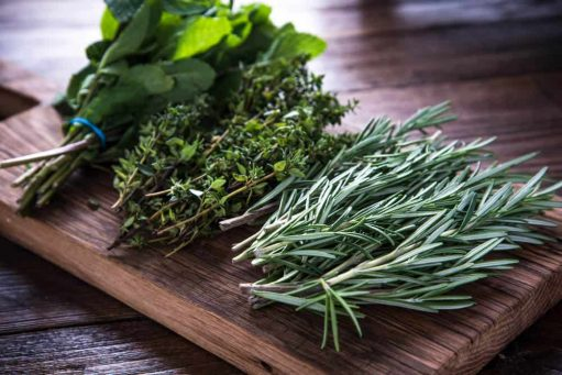 Top Herbs To Boost Your Immunity
