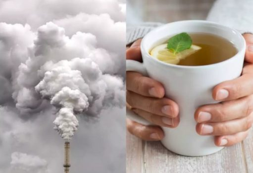 Top Ayurvedic Diet Tips To Fight Air Pollution